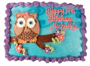 owl cakes Aggies Bakery Cake Shop