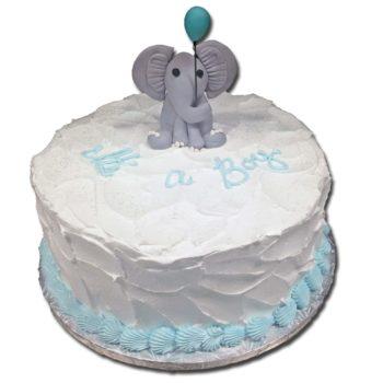 Baby Shower Cake 30