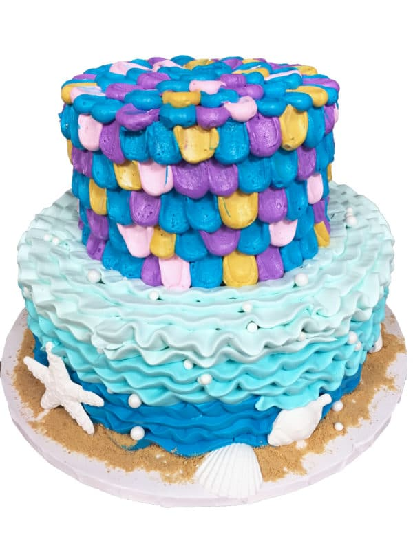 Two Tier Cake 20