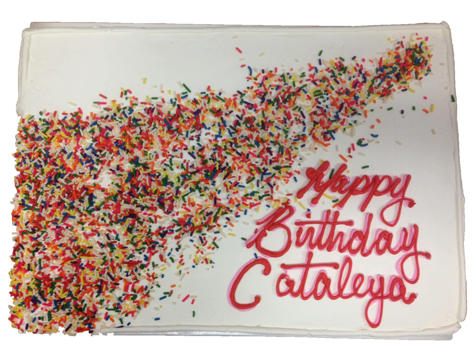 Home Cakes Birthday Cake 12b Sprinkle Explosion