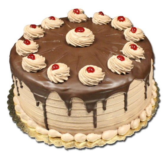 chocolate-rasp-torte
